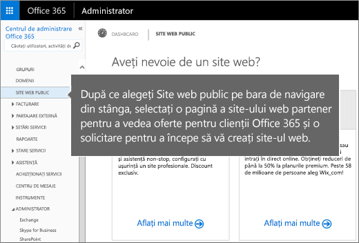 În Office 365, alegeți Site web public