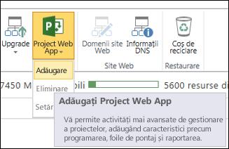 Project Web App > Adăugare