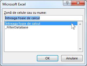 Caseta de dialog Microsoft Excel în Word