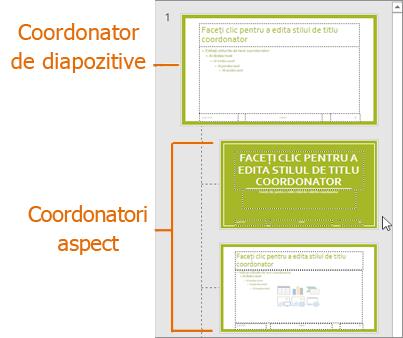 Coordonator de diapozitive cu aspecte în Vizualizarea coordonator de diapozitive din PowerPoint