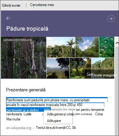 Cercetare Vedeți toate imaginile, adăugați text sau adăugați și citați text