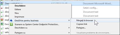 Vizualizarea unui fișier dintr-un folder sincronizat într-un browser web
