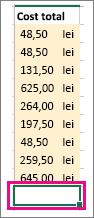 După ce faceți clic pe Însumare automată, suprafață de selecție și formula sunt afișate