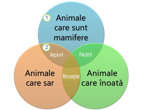 O diagramă Venn