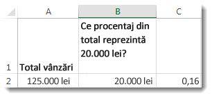 125.000 lei în celula A2, 20.000 lei în celula B2 și 0,16 în celula C3