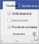 Captură de ecran cu opțiunile de vizualizare cu grila dinamică și punctele de conexiune selectate