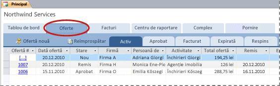Fila Oferte din șablonul pentru baze de date Servicii