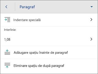 Comanda Paragraf cu opțiunile de formatare