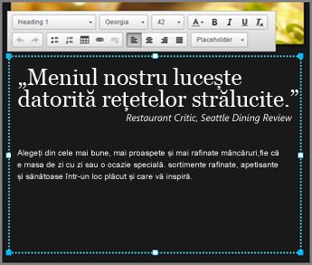 Exemplu de text corp la designul GoDaddy