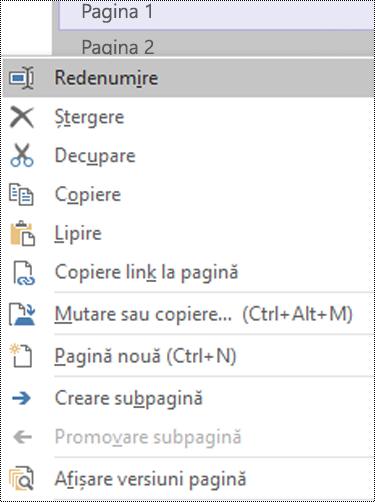 Caseta de dialog Redenumire pagină din OneNote pentru Windows
