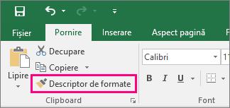 Afișează butonul Descriptor de formate din Excel