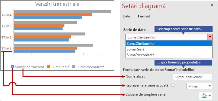 Formatare serii de date diferite pe fila Format