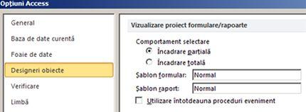 afișează opțiunile setărilor proiectantului de rapoarte și formulare