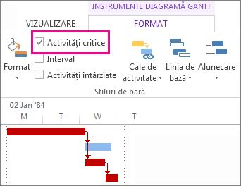 Critical Tasks check box on the ribbon and highlighted Gantt bars in Project 2013
