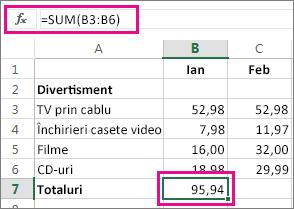 Exemplu de Însumare automată care arată rezultatul