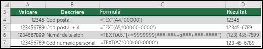 Formate speciale pentru funcția TEXT