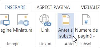 Butonul Antet și subsol