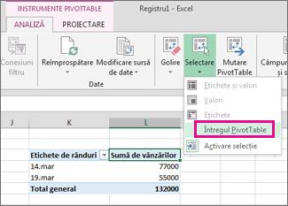 Selectarea întregului raport PivotTable