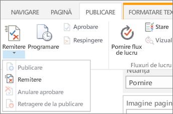 Remiterea, publicați butoanele de pe fila publicare în modul de editare.