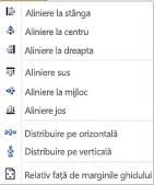 Opțiuni de Aliniere obiect din Publisher 2010