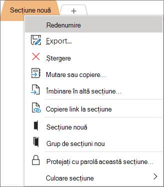 Captură de ecran a meniului contextual cu opțiunea Redenumire selectată.