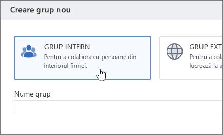 Captură de ecran care afișează ecranul creați un grup în Yammer, cu grupul intern selectat.