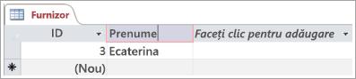Fragment de ecran pentru tabelul Furnizor care afișează două rânduri cu ID