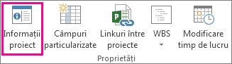 Informații proiect pe fila Proiect