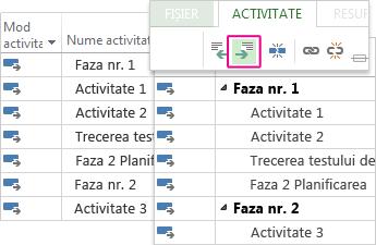Listă de activități cu activități rezumat și subactivități în Diagramă Gantt