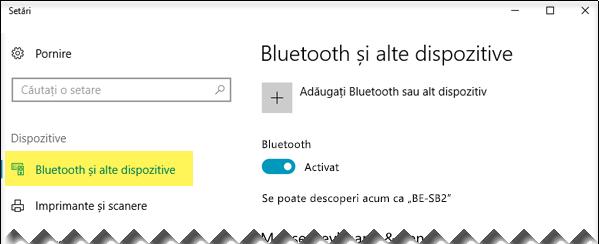 Asigurați-vă că opțiunea Bluetooth și alte dispozitive este selectată în partea stângă