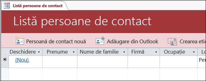 Formularul Listă de persoane de contact din șablonul de bază de date Persoane de contact Access