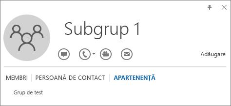 Captură de ecran a filei Apartenență din cartea de vizită Outlook pentru grupul denumit Subgrupul 1, care arată că Subgrupul 1 este un membru al grupului denumit Grup de test.