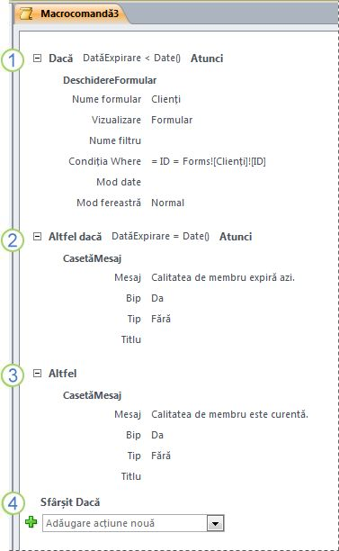 O macrocomandă care conține o instrucțiune Dacă/Altfel dacă/Altfel.