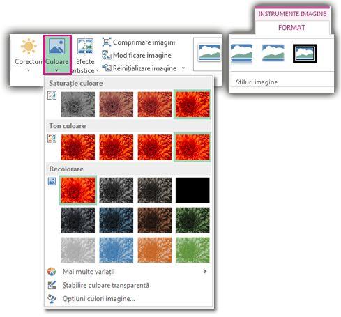 Meniul butonului Culoare deschis din fila Format Instrumente imagine
