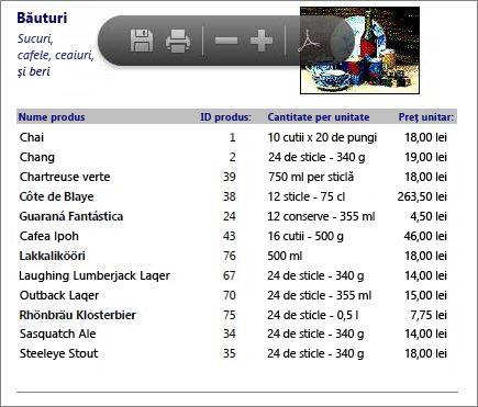 Un fișier PDF încorporat al unui catalog de produse afișat în PDF Reader