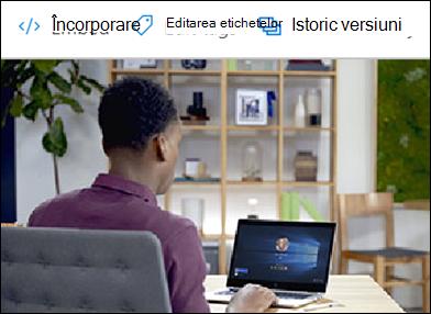 Editarea meniului de etichete în OneDrive