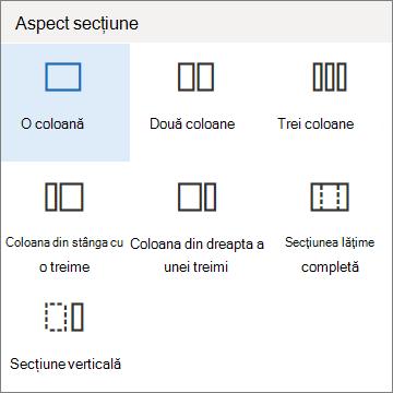 Aspect secțiune