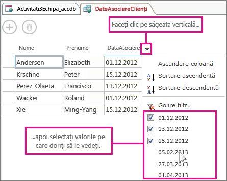 Filtrarea unei coloane într-o interogare dintr-o aplicație Access.