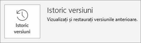 Butonul pentru Istoricul versiunilor din interiorul paginii informații