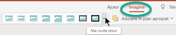 Fila Imagine din panglică este disponibilă atunci când este selectată o imagine pe diapozitiv.