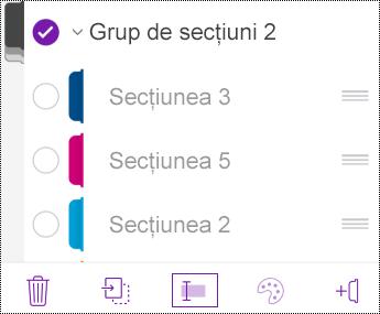 Redenumirea unui grup de secțiuni în OneNote pentru iOS