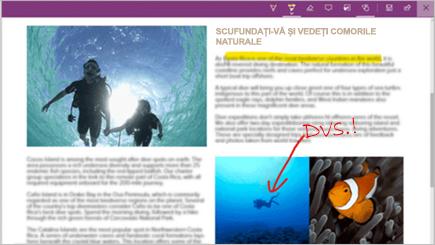 Captură de ecran a unei note web pe o pagină Microsoft Edge