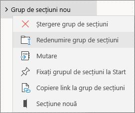 Redenumirea grupurilor de secțiuni în aplicația OneNote pentru Windows 10
