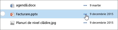Nume de fișier evidențiată în biblioteca de documente