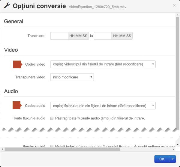 Caseta de dialog Opțiuni de conversie are opțiuni pentru Cod video și Codec audio