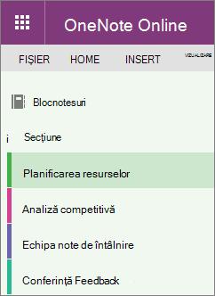 Exemple de secțiuni OneNote