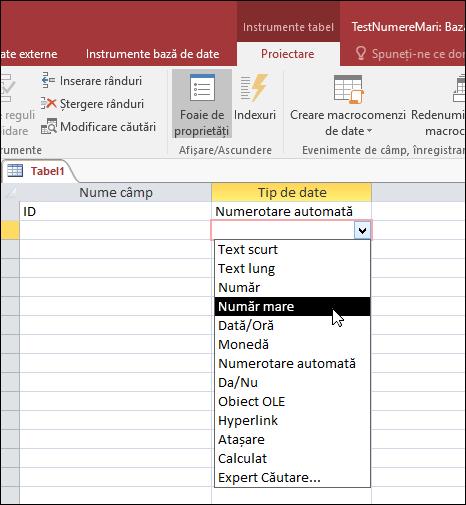 Captură de ecran a listei de tipuri de date într-un tabel Access. Este selectată opțiunea Număr mare.