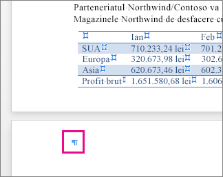Marcajul de paragraf gol este evidențiat pe pagină, după un tabel