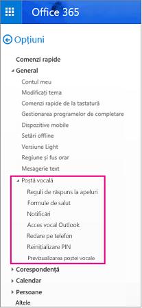 Opțiunile de poștă vocală în panoul opțiuni de e-mail Outlook