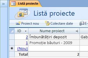 The Projects database template